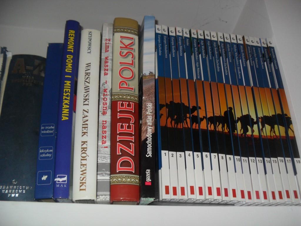 5 действенных способов выучить польский язык за короткие сроки
